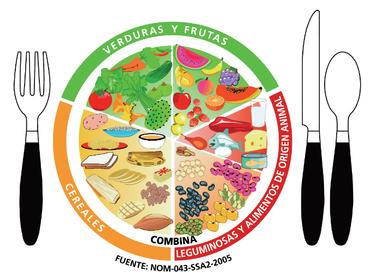 come vegetariano y olvida las enfermedades pdf